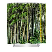 Bamboo Hill Shower Curtain