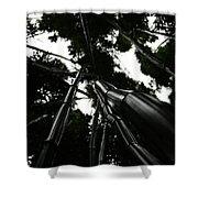 Bamboo Skies 3 Shower Curtain