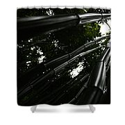 Bamboo Skies 5 Shower Curtain