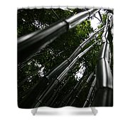 Bamboo Skies 6 Shower Curtain
