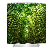 Bamboo Sky - The Magical And Mysterious Bamboo Forest Of Maui. Shower Curtain