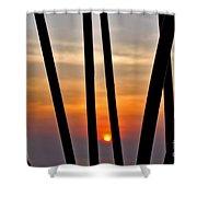 Bamboo Sunset Shower Curtain