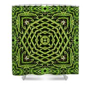 Bamboo Symmetry Shower Curtain