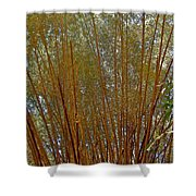 Bamboo Trees In Manuel Antonio National Preserve-costa Rica Shower Curtain