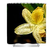 Banana Azalea  Shower Curtain