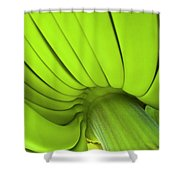 Banana Bunch Shower Curtain
