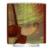 Banana Composition I Shower Curtain