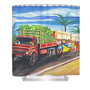 Banana Delivery In Cameroon 02 Shower Curtain
