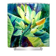 Bananas 6-12-06 Julianne Felton Shower Curtain