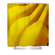Bananas Shower Curtain