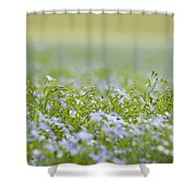 Bands Of Blue Shower Curtain