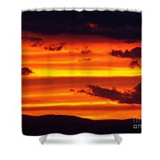 Bands Of Gold Shower Curtain