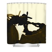 Barbed Shower Curtain