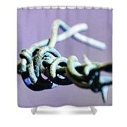 Barbed Violet Shower Curtain