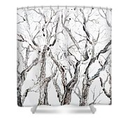 Bare Branches Print Option 2 Shower Curtain