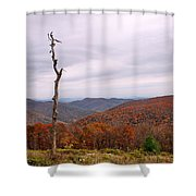 Bare Naked Tree Shower Curtain