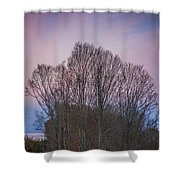 Bare Trees And Autumn Sky Shower Curtain
