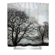 Bare Trees Winter Sky Shower Curtain