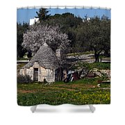 Bari 1 Shower Curtain