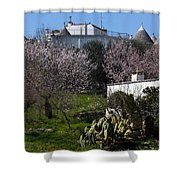 Bari 2 Shower Curtain