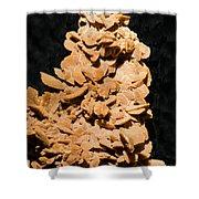 Barite Shower Curtain by Millard H. Sharp