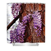 Bark Beauty Shower Curtain