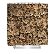 Bark Of A Tree Shower Curtain