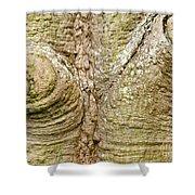 Bark Of Silk Floss Tree Background Texture Pattern Shower Curtain