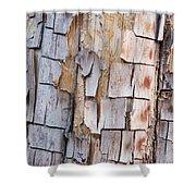 Bark On A Tree In The Desert In Sedona Shower Curtain