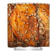 Bark With No Bite Shower Curtain