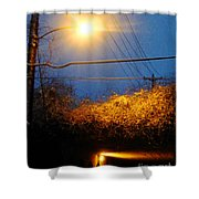 Barksdale Blue And Yellow  Shower Curtain