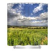 Barley View  Shower Curtain