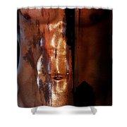 Barmuda Metallic  2 Shower Curtain