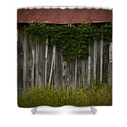 Barn Eyes Shower Curtain