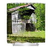 Barn From The Forgotten Farm 3 Shower Curtain