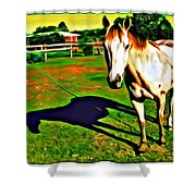 Barn Horse Shower Curtain
