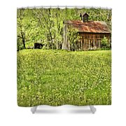 Barn In Wild Turnips Shower Curtain