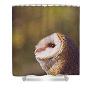 Barn Owl Photo Millie Shower Curtain