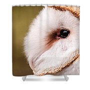 Barn Owl Profile Shower Curtain