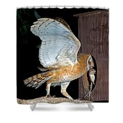 Barn Owl With Rat Shower Curtain
