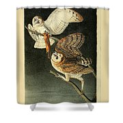 Barn Owls Shower Curtain
