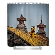 Barn Roof In Color Shower Curtain