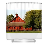 Barn South-3586 Shower Curtain
