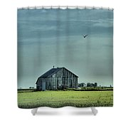 The Flight Home Shower Curtain by Dan Sproul