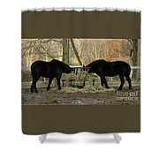Barnyard Beauties Shower Curtain