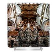 Baroque Grand Organ In Oude Kerk Shower Curtain