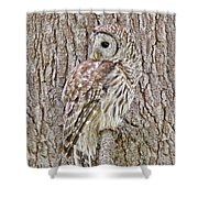 Barred Owl Camouflage Shower Curtain