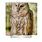 Barred Owl On Moss Shower Curtain
