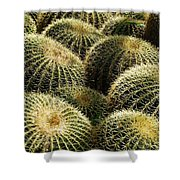 Barrel Cacti Shower Curtain