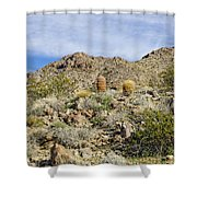 Barrel Cactus Shower Curtain